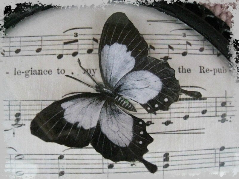 papillon collage en 3D