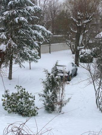 neige_9_janv__3_