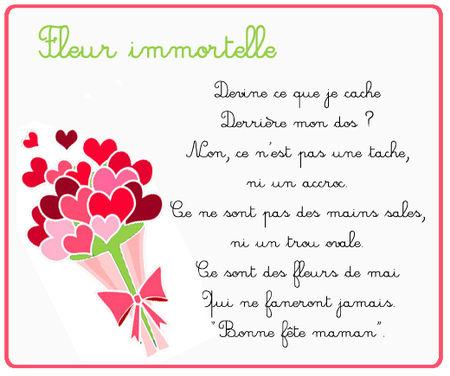 fleur_immortelle