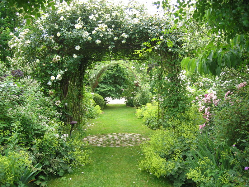 le jardin de chantal et alain sologne album photos mon jardin de roses anciennes. Black Bedroom Furniture Sets. Home Design Ideas