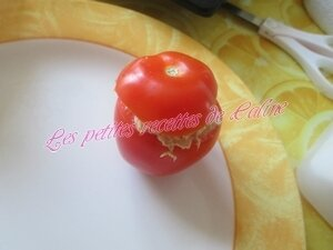 Tomates farcies froide Thon,oeuf mayonnaise18