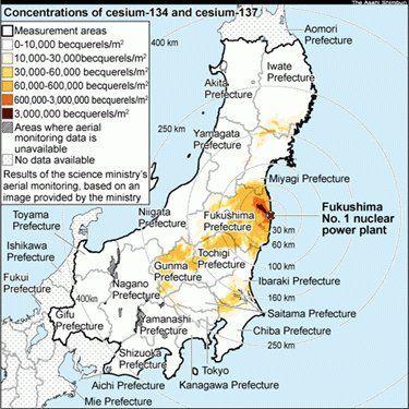 fukushima-cesium