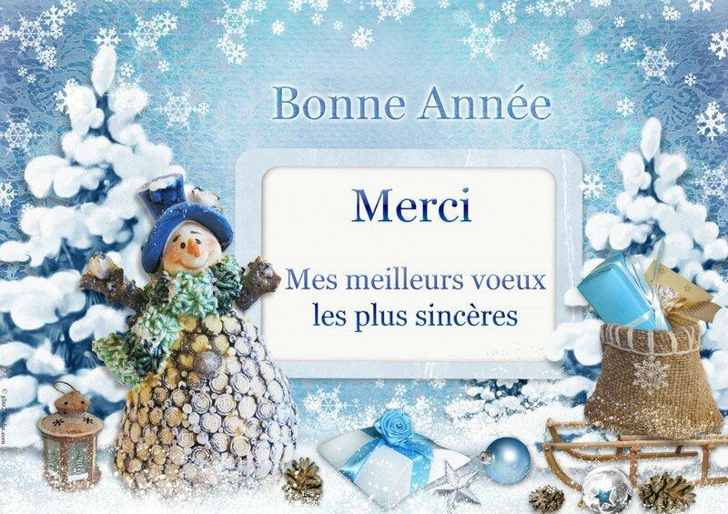 2 merci-voeux-neige