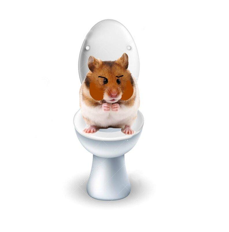 toilette-hamster