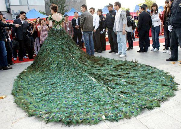 robe-de-mariage-plume-de-paon