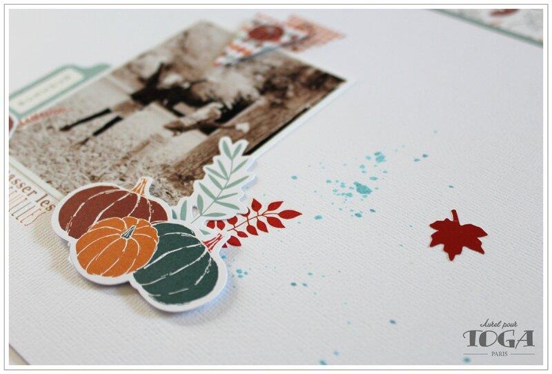 60 - 280915 - Ramasser les belles feuilles - Sous-Bois - page Toga_2