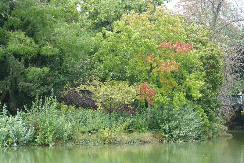 Un lac en septembre