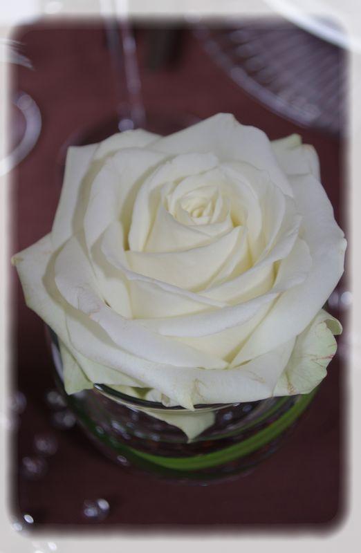 mariage_brun_blanc_046_modifi__1