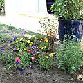Pose dans le jardin