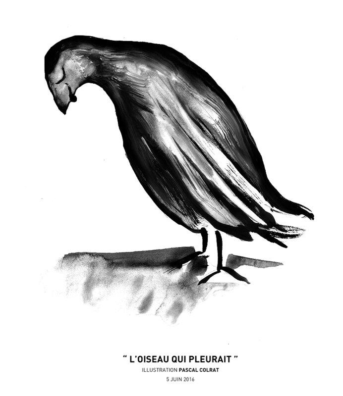 __l_oiseau_qui_pleurait__