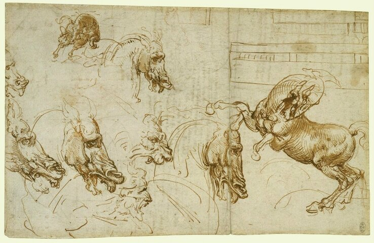 extraordinary drawings leonardo da vinci ten drawings from the royal collection on view