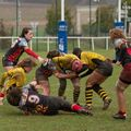 66IMG_0941T