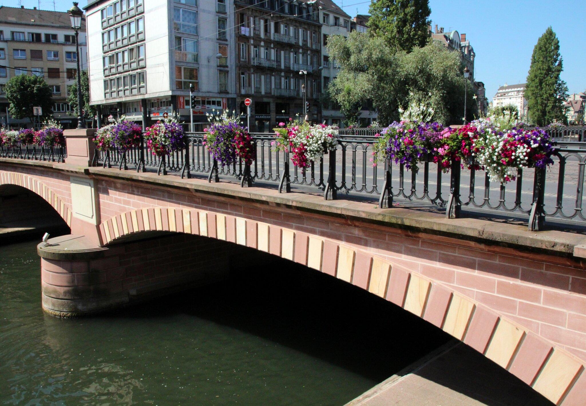 Le pont de saverne photo de strasbourg les pigeons for Salon de la gastronomie strasbourg