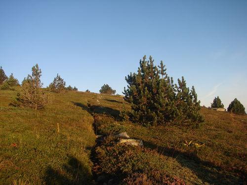 2008 09 08 Au sommet du Mont Mézenc aprés le levé du soleil sur un petit chemin