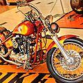 Harleys_CopyrightTasunkaphotos2014_06