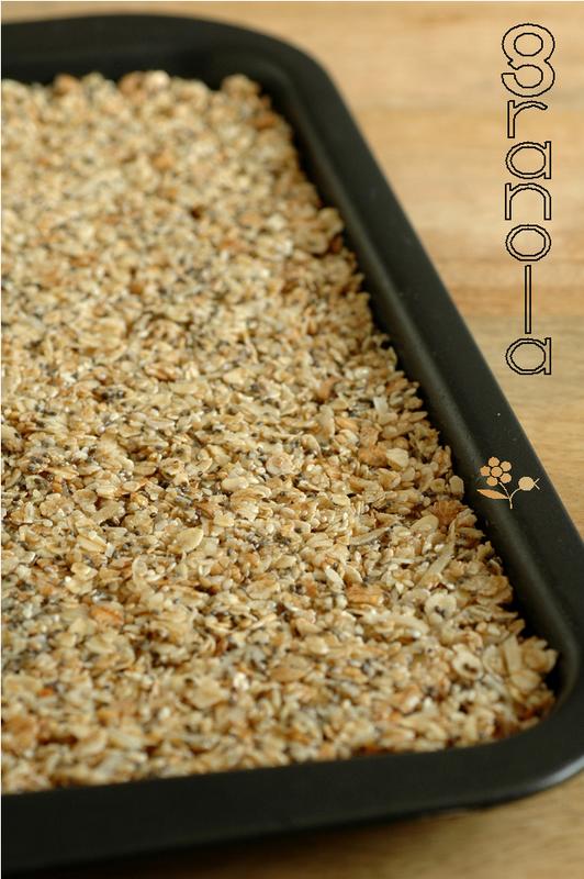 Granola avoine, blé, orge, noix de coco, sésame & graines de chia_1