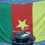 Commemoration_Cameroun03051