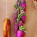 Vieux légumes
