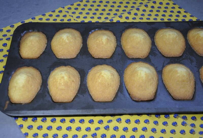 Madeleines moule