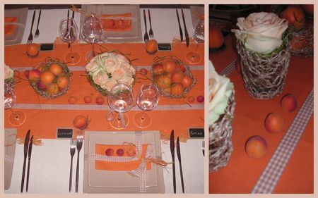 2009_07_07_table_abricots12