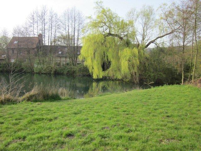 Balade matinale le long de la coulée verte à Arques-la-Bataille (76)...