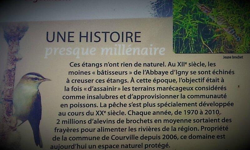Histoire des étangs de Courville