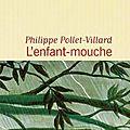 « l'enfant-mouche » de philippe pollet-villard
