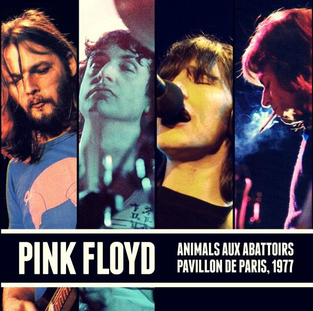 pink-floyd-animals-aux-abattoirs