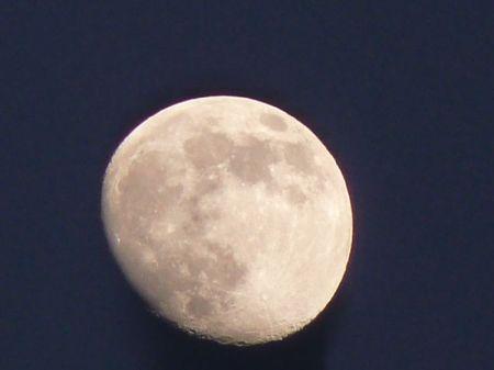 2009_01_08___lune_17h20___scene_crepuscule__2_