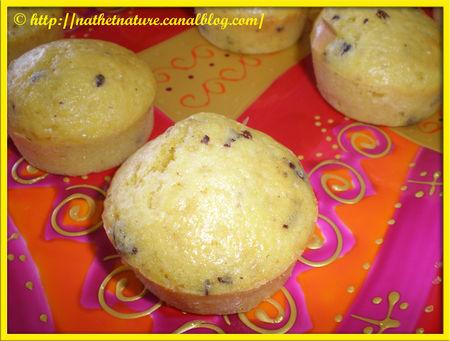 Muffins_Choco_Mandarine___2