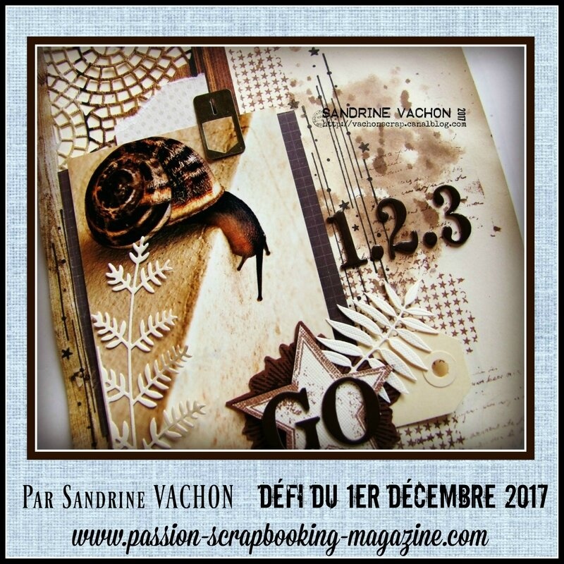 Sandrine VACHON défi 1er déc BLOG PS (3)