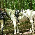 balade equestre gastronomique à La Lucerne d'Outremer (115)