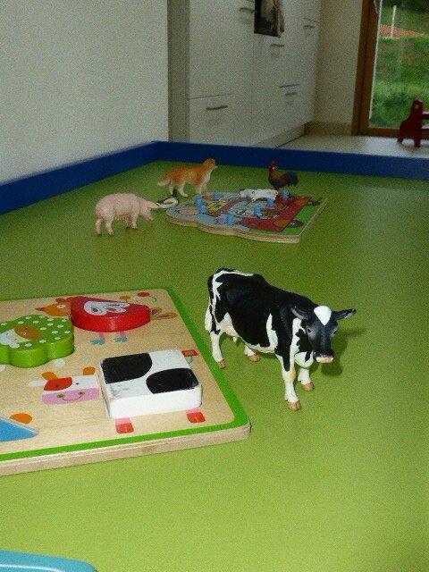 encastrement vache