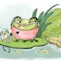 Le monde fascinant des grenouilles....
