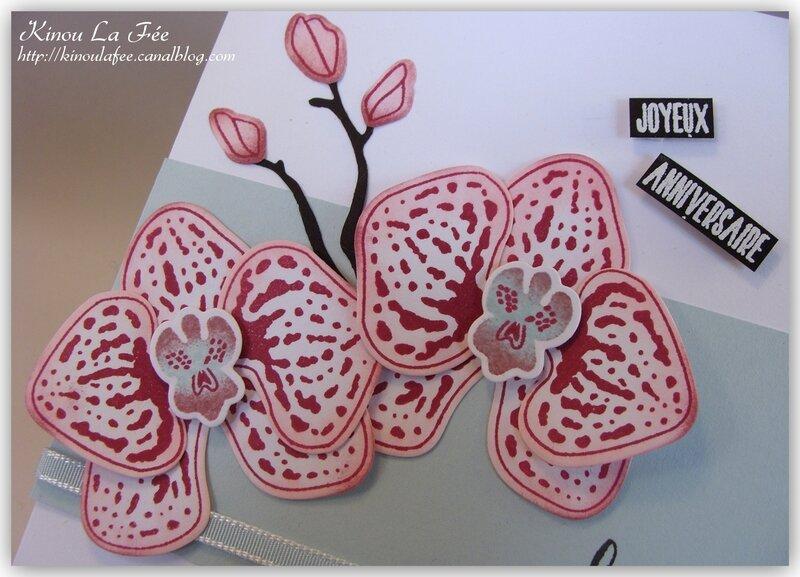 Carte Orchidée Grimpante rose et bleu 3