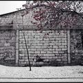 White wall - sosnowiec - pologne