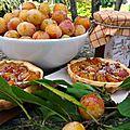 Prune dorée de lorraine