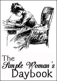 simple_woman_daybook_large