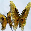 MES BEAUX PAPILLONS 5 EN VENTE SUR COMMANDE