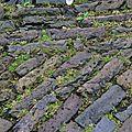 Pavés de Delft (2)