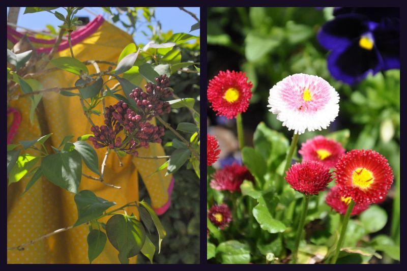 tunique et fleurs