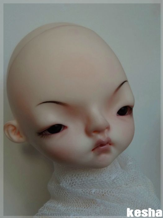 domadoll cooki2
