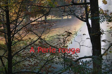 Perle_rouge