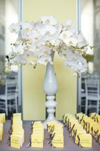 callahan_coffey_wedding_574$!x600