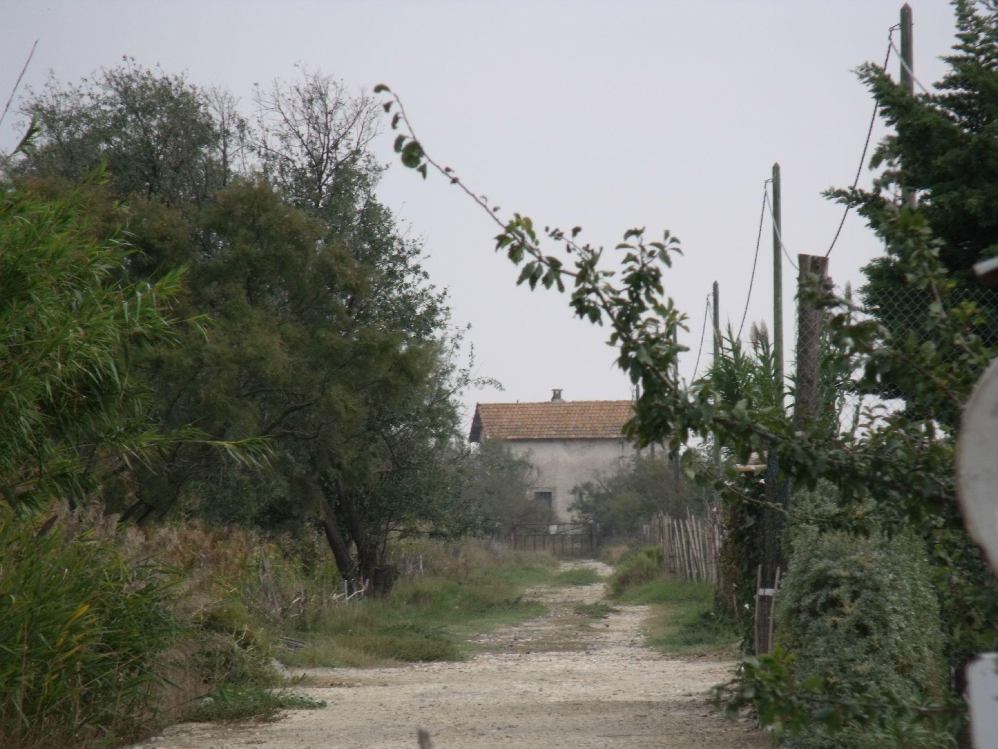 Les Bruns (Bouches-du-Rhône - 13)