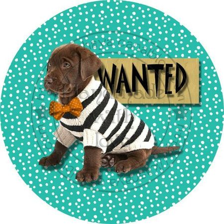 WANTED DOGGY