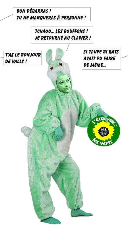 duflot-lapin-vert-bulles