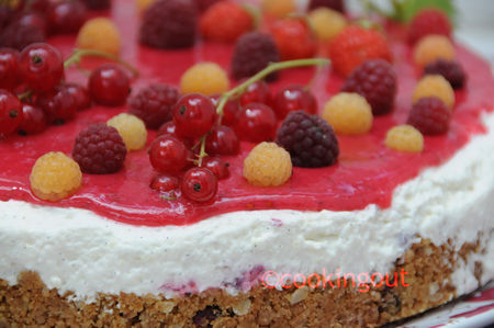 cheese_cake_rouge_d_tail