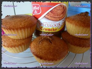 muffins_sp_culoos3