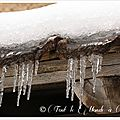 La balade du dimanche : entre neige et verglas (suite) ...